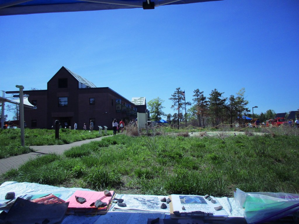 Photo: Save The Pine Bush Table At The Lupine Fest