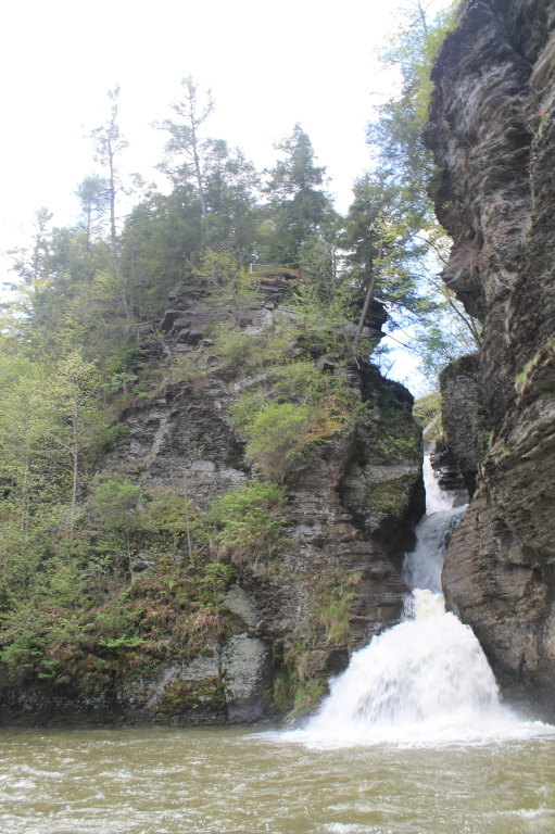 Photo: Looking Up Towards the Many Falls
