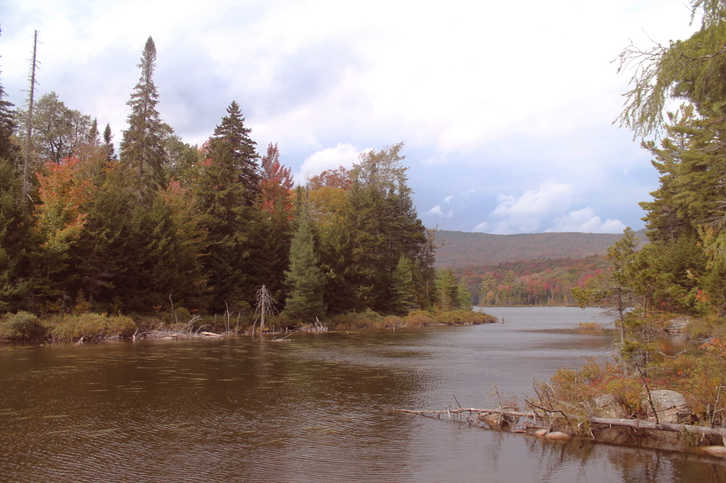 Photo: One Last View Before Leaving Moose Ponds