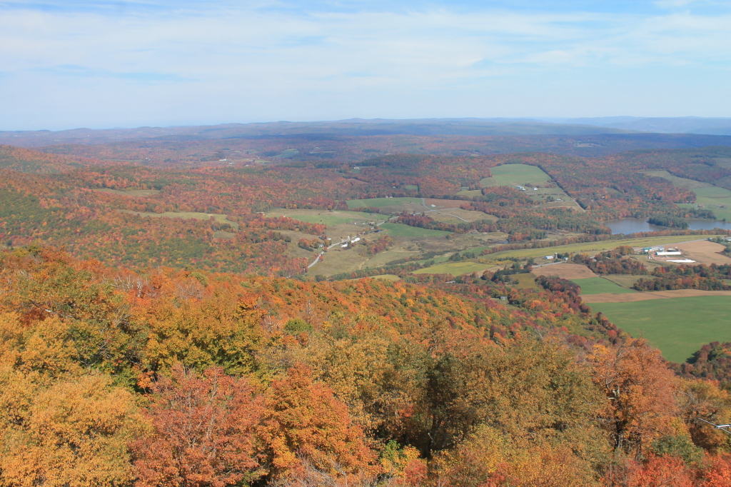 Photo: North Towards Burnt Rossman State Forest
