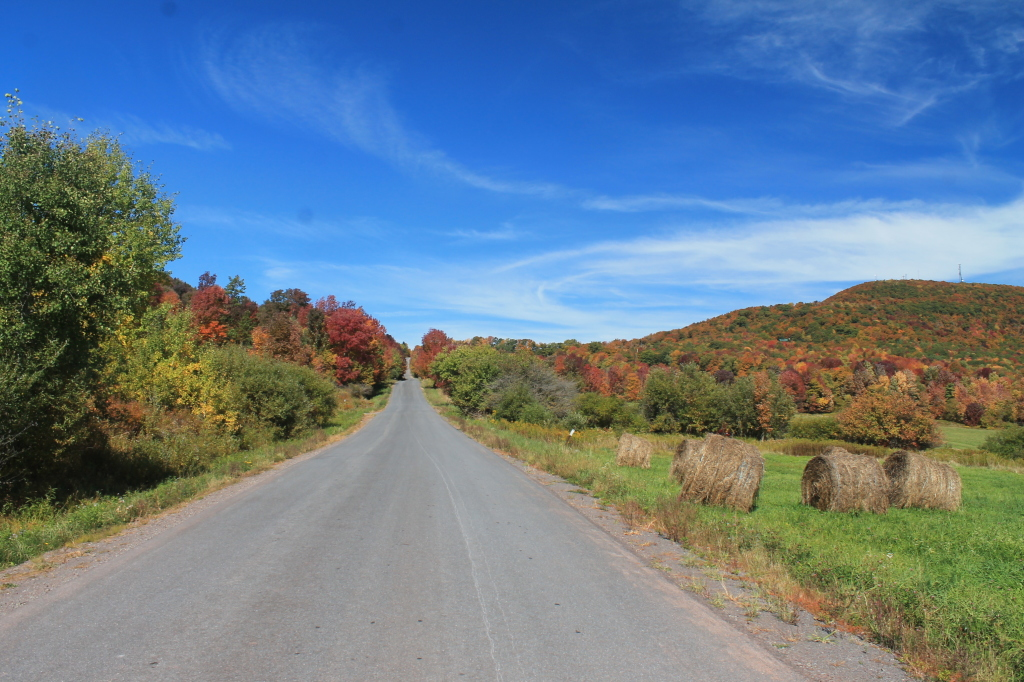 Photo: Tower Mountain Road