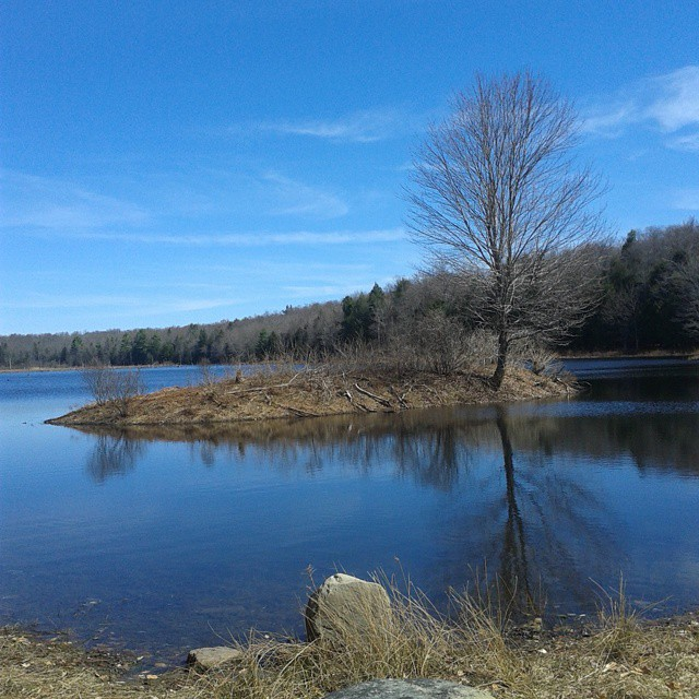 Photo: Whaley Pond