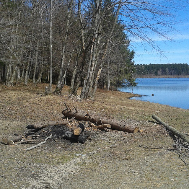 Photo: Whaley Pond Campsite (no camp here disc but on DEC map)