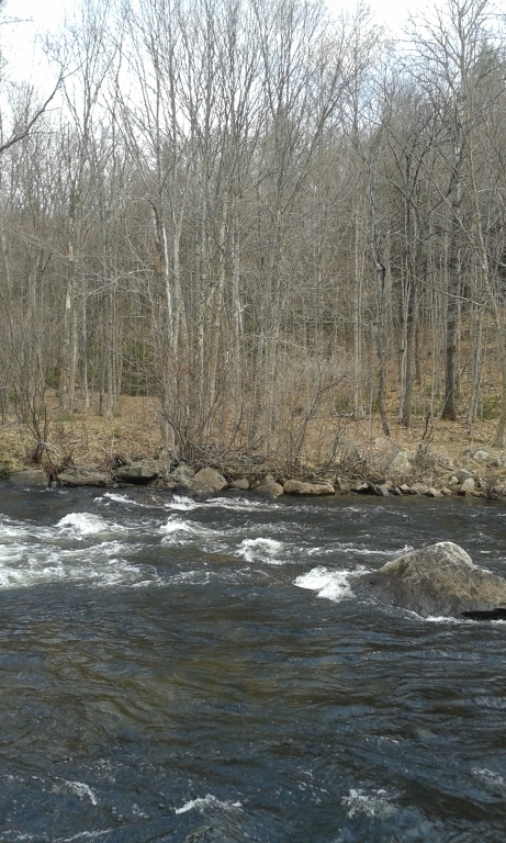 Photo: Rapids Above Auger Falls