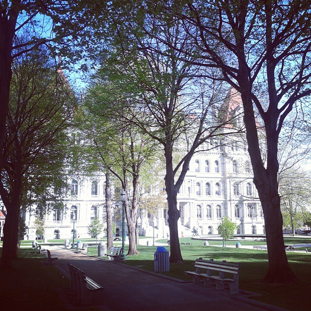 Photo: Today's weather is about as nice as it ever gets in Albany