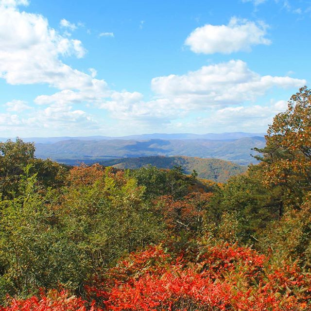 Photo: View from Shenandoah Mountain Overlook on US 33 at WV / VA border