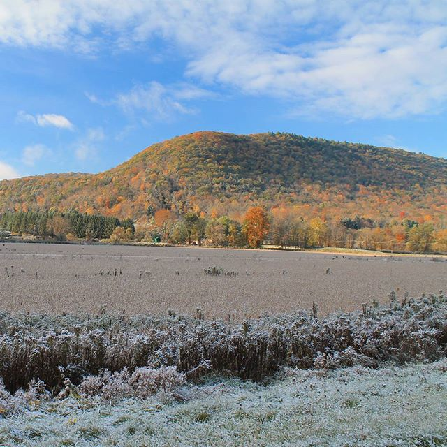 Photo: Frosty morning in Ansonia