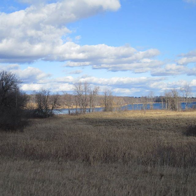 Photo: Nature Trail View
