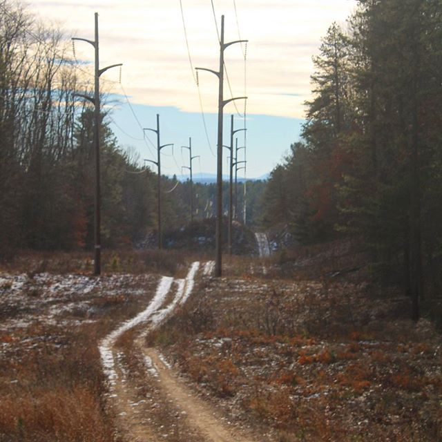 Photo: Power Lines