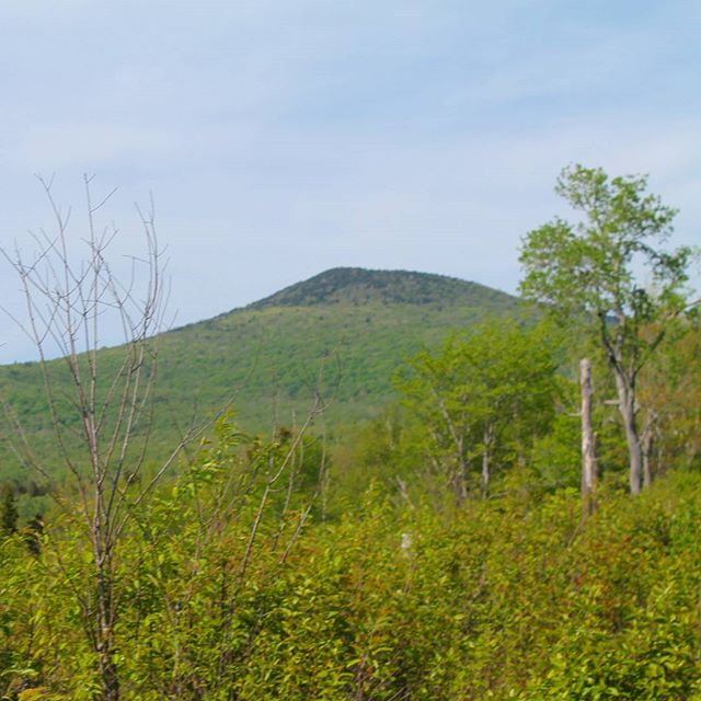 Photo: Stratton Mountain