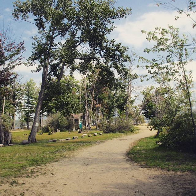 Photo: Picnic area