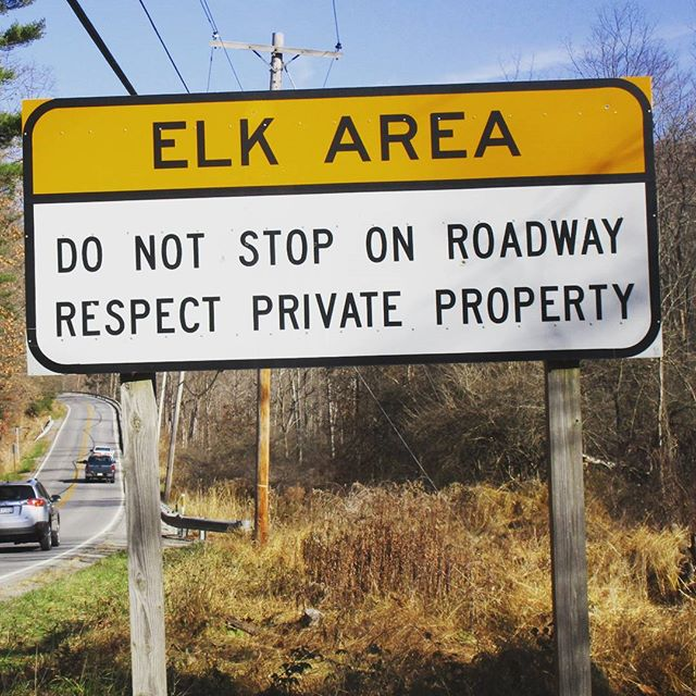 Photo: So are you supposed to hit them? #elklivesmatter