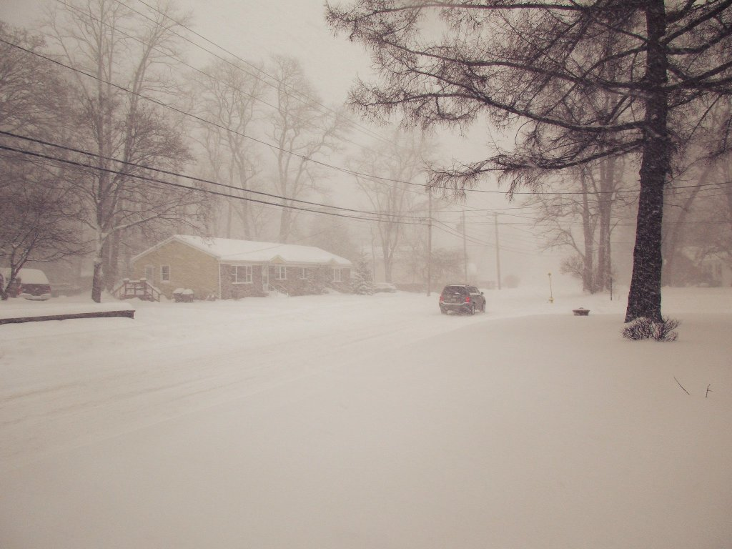 Photo: Elm Avenue During The Blizzard