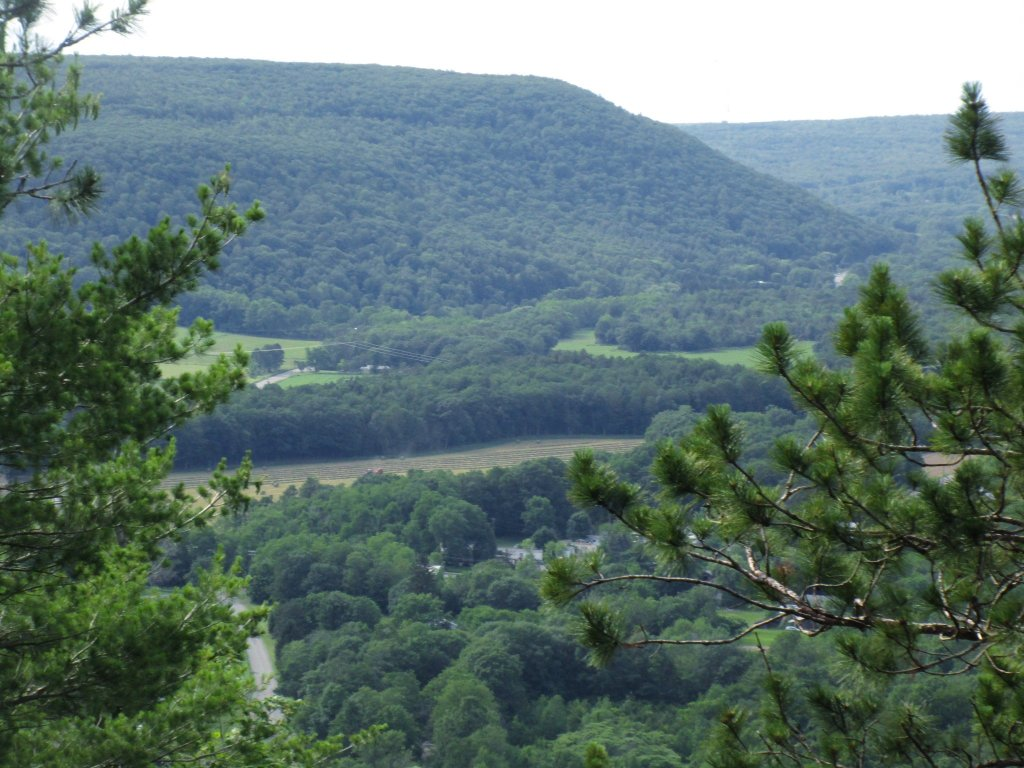 Photo: Another View Of Wolf Hill