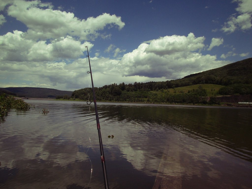 Photo: Fishing At The Bleheim Reservior
