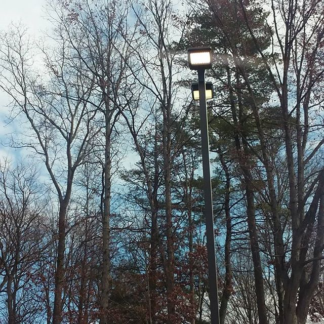 Photo: New York believes in being green and burning lots of coal. That's why they leave their street lights on all day