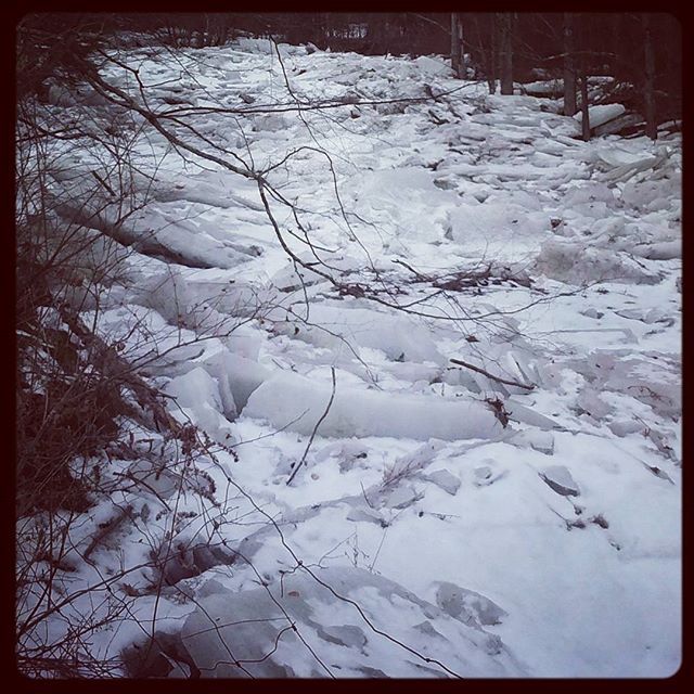 Photo: Ice jam at my parents house