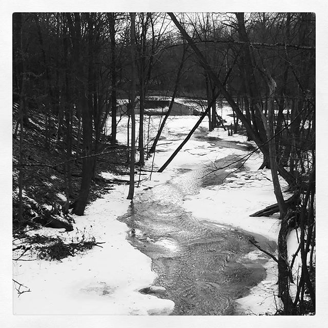 Photo: Crossing the Vly Creek