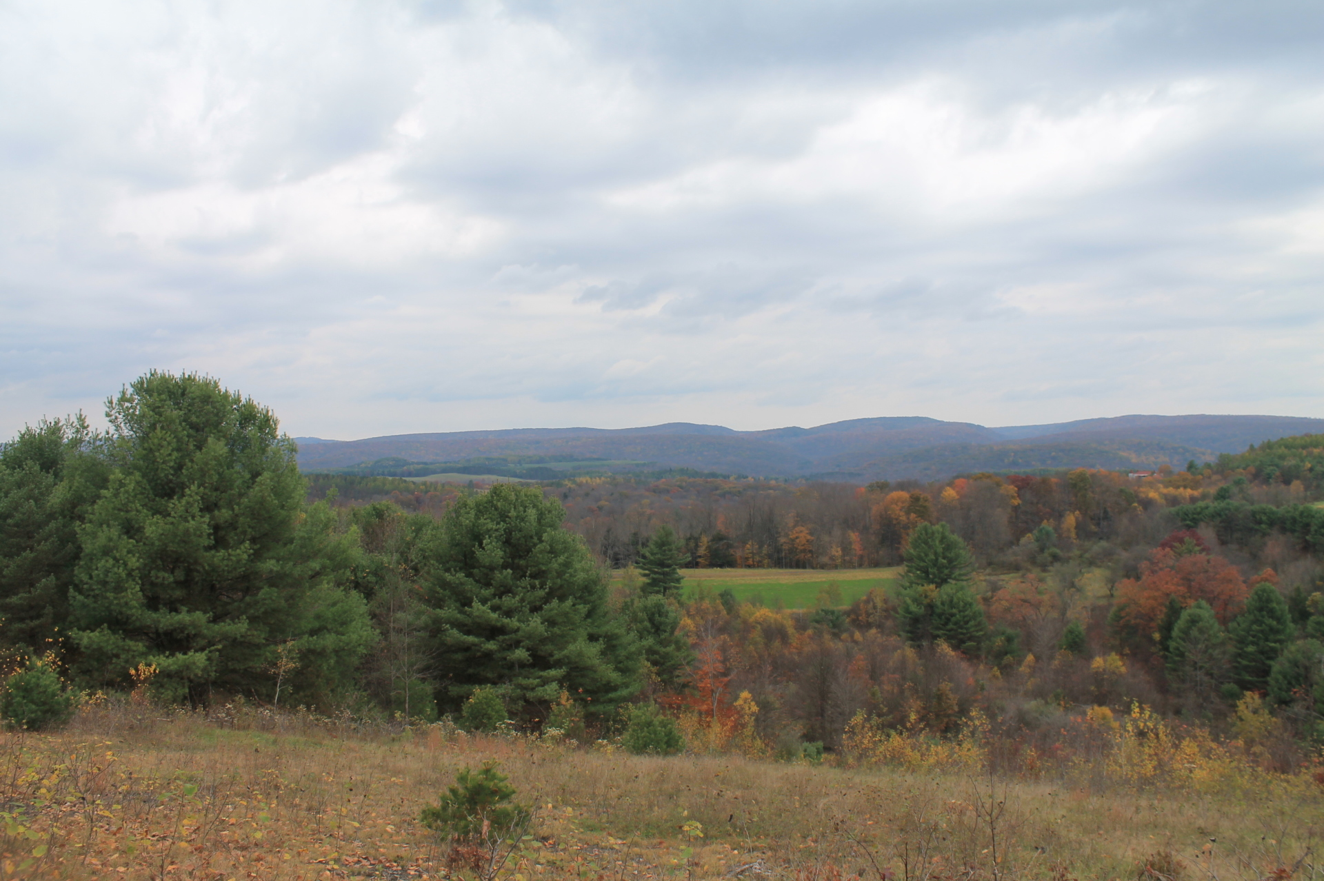 elk county Active natural gas wells by county and city, including maps, names of operators,  lists of drilling  elk county  well, county, municipality, operator, violations.