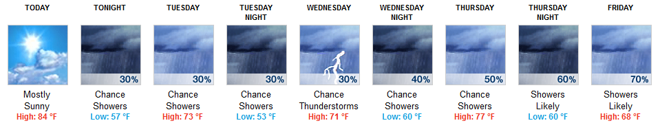 This Week's Forecast